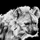 Hyena New